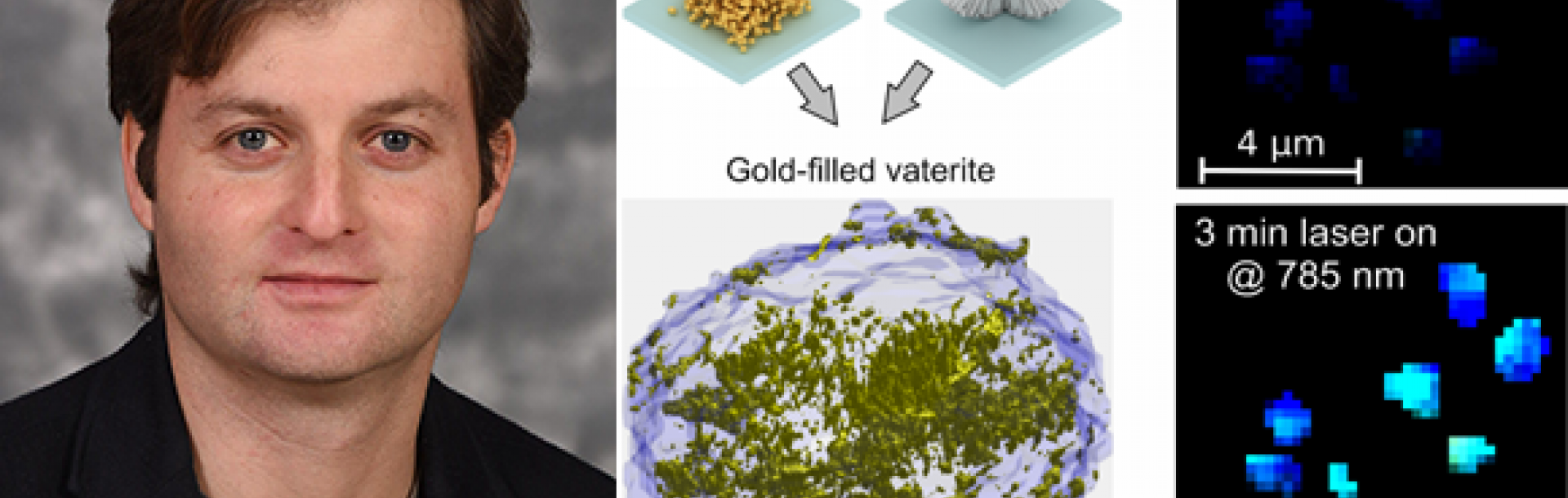 Figure to the left shows 3D reconstruction of the golden vaterite and the laser-induced heating of the spherulites.