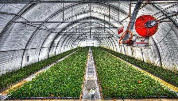 optimal kinematic design of a manipulator for early detection of stresses in greenhouse crops
